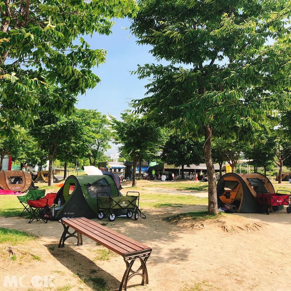 汝矣島漢江公園周邊的帳篷