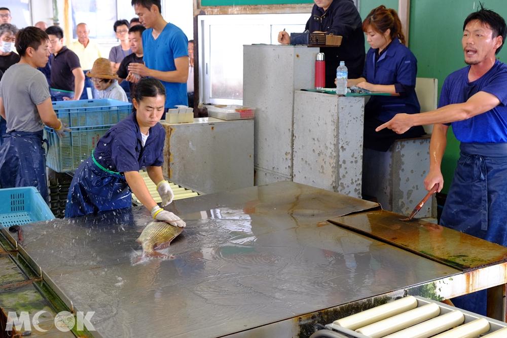 捕魚業合作社拍賣市場