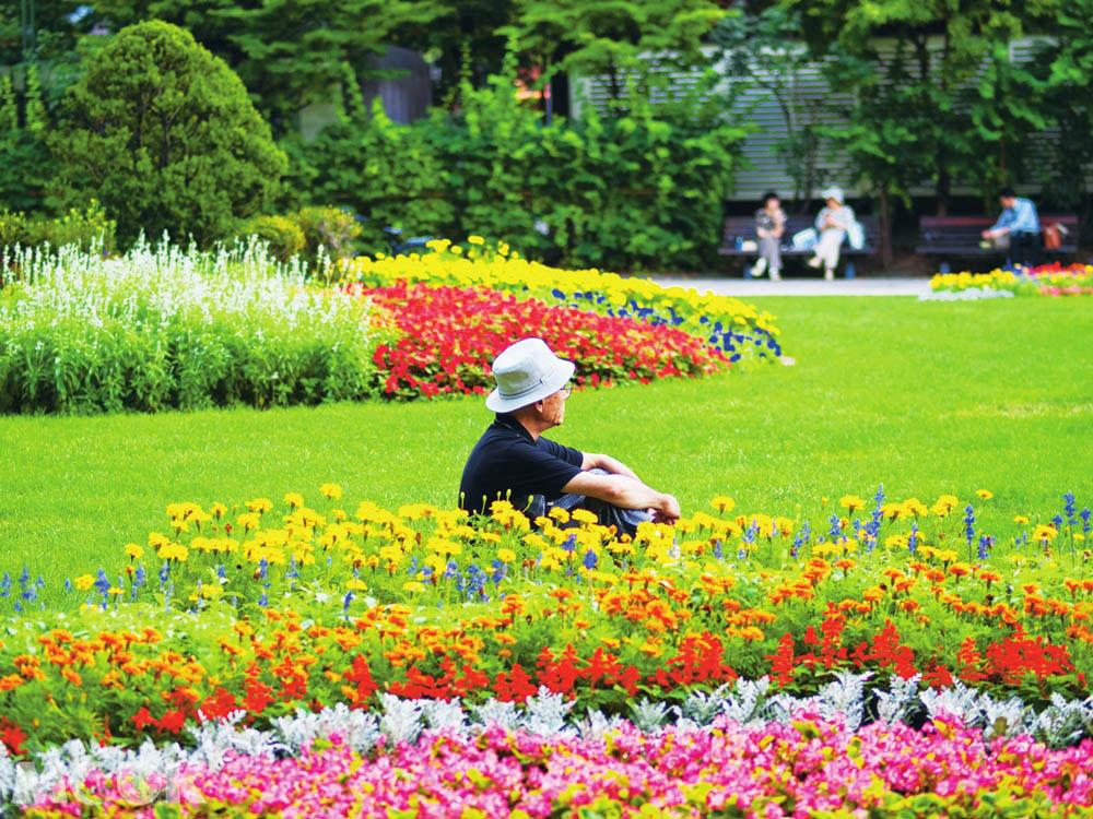 札幌大通公園一景
