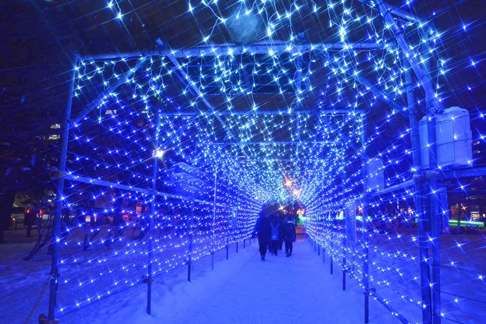 札幌的札幌白色燈樹節一景