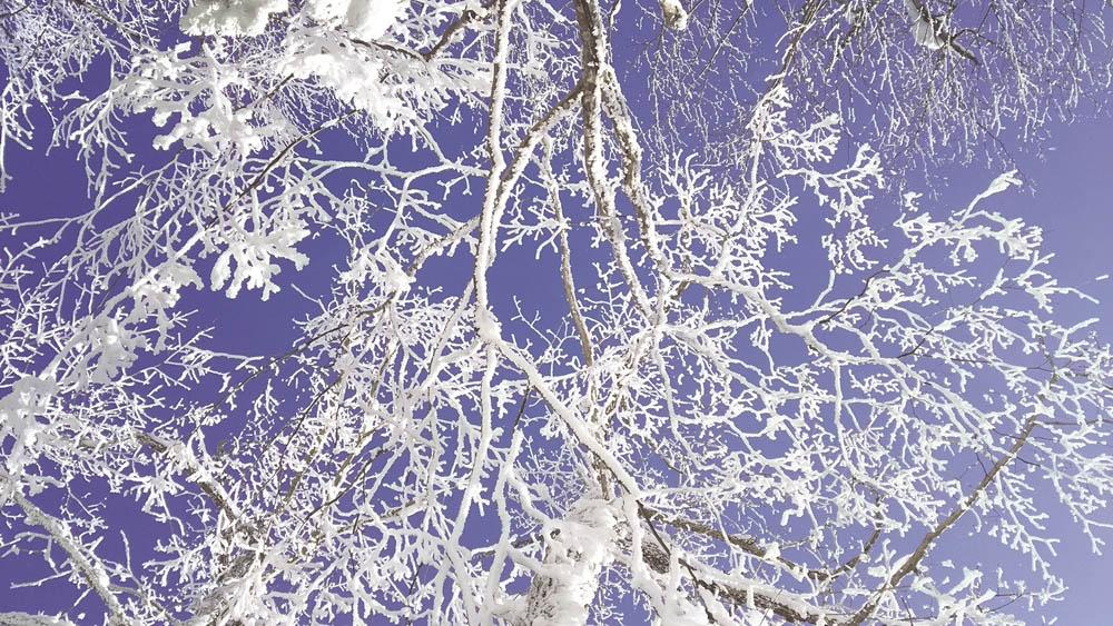 北海道阿寒湖的冬天雪景與湖上活動