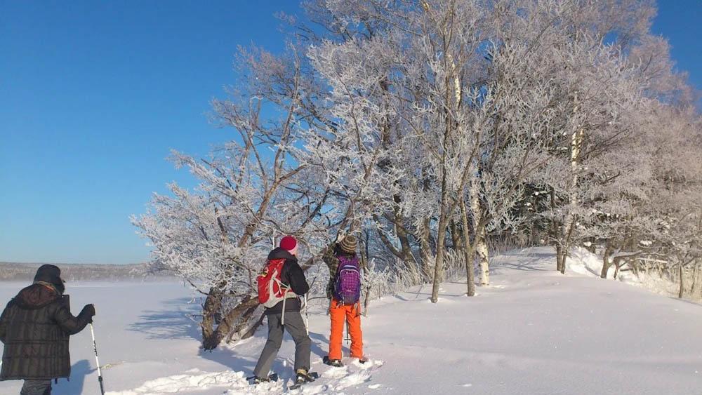北海道阿寒湖冬天的健行行程