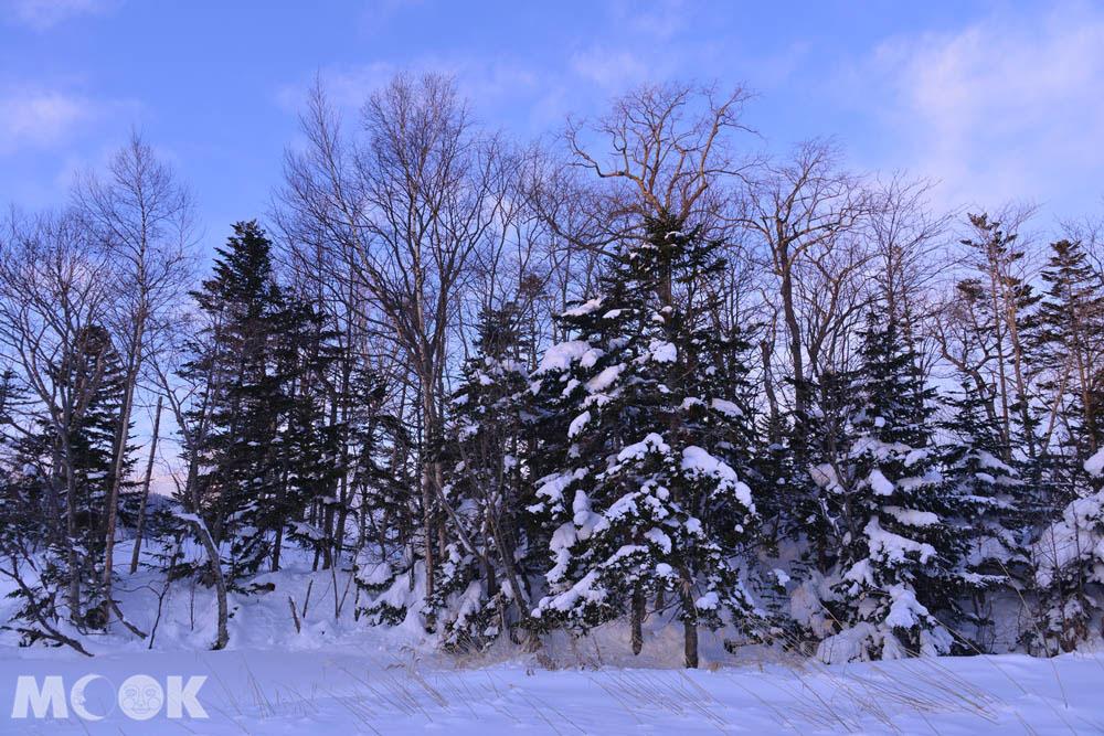 北海道阿寒湖的冬日活動