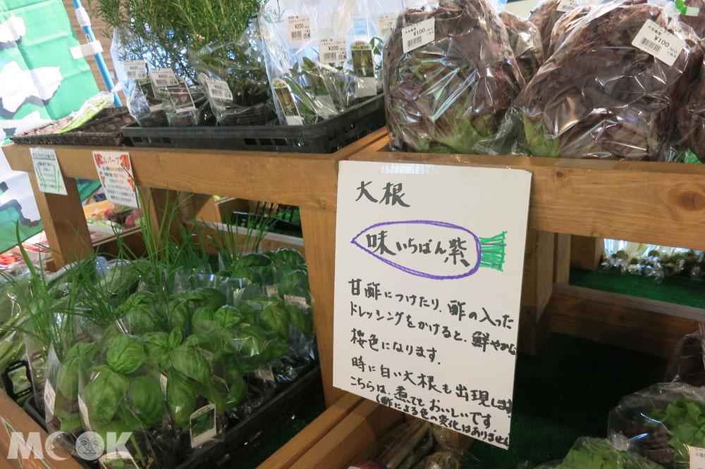 北海道七飯町的道の駅なないろ・ななえ(七色・七飯休息站) 新鮮香草盆栽