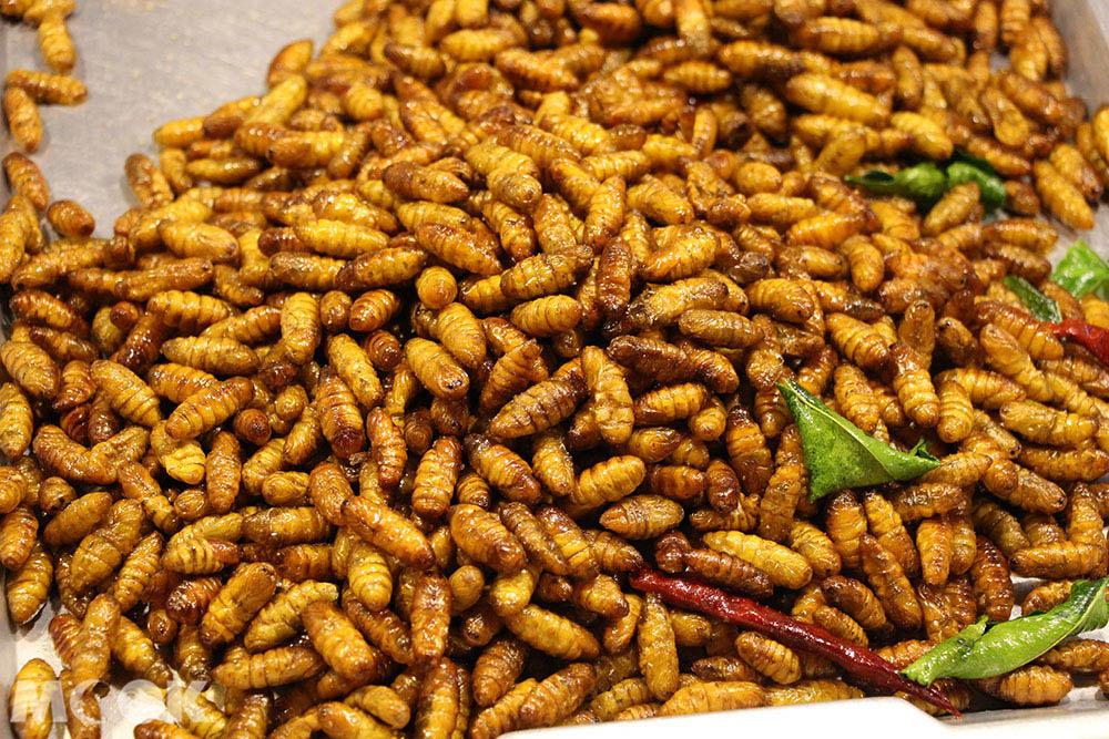 泰國 曼谷 拉差達火車夜市 炸蟲蟲
