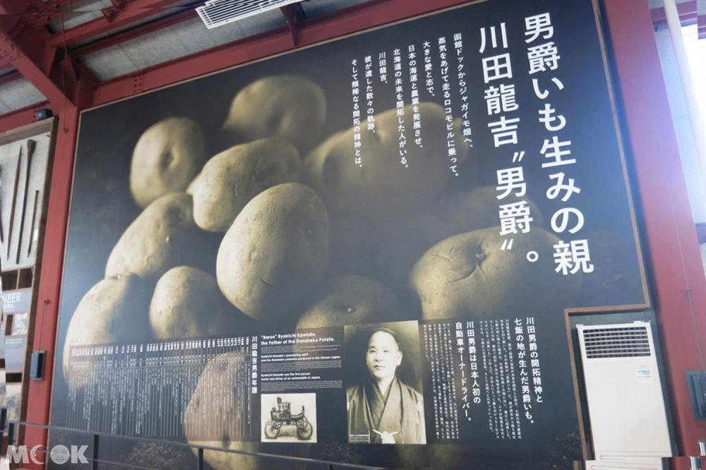 北海道七飯町的男爵馬鈴薯介紹
