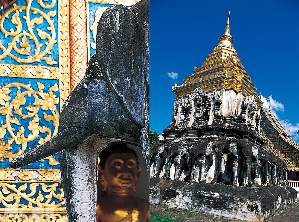 泰國 清邁 古城 寺廟 泰國寺廟 清曼寺 佛塔 大象