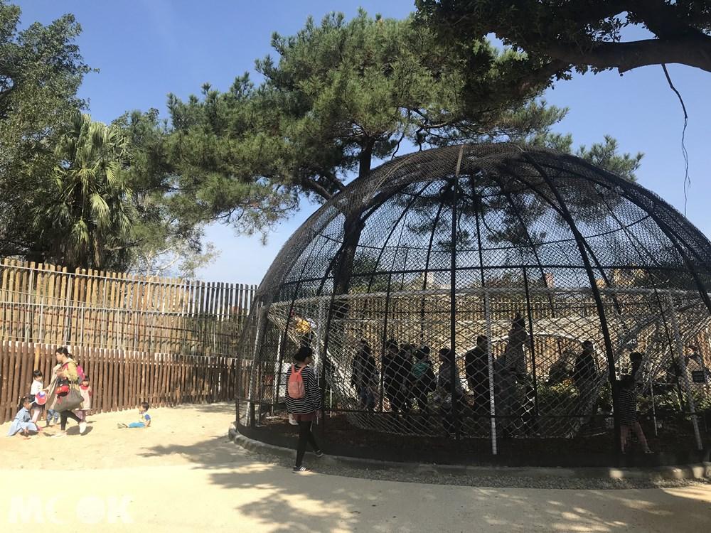 台灣 新竹 北台灣 新竹市立動物園 籠子 鳥籠
