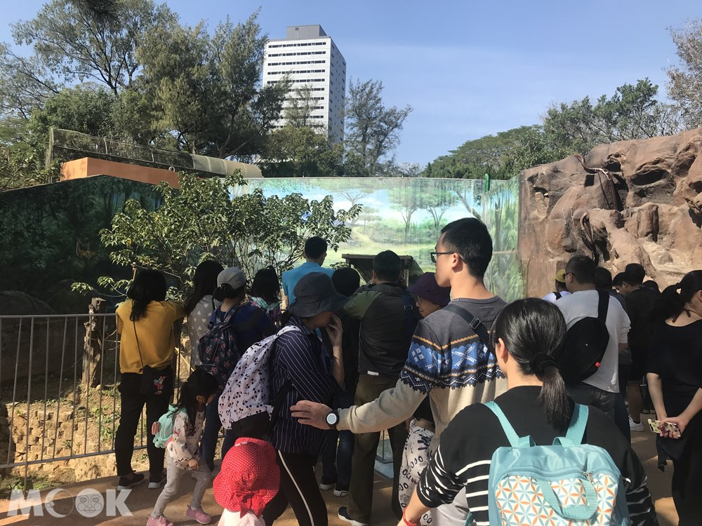 台灣 新竹 北台灣 新竹市立動物園 人擠人