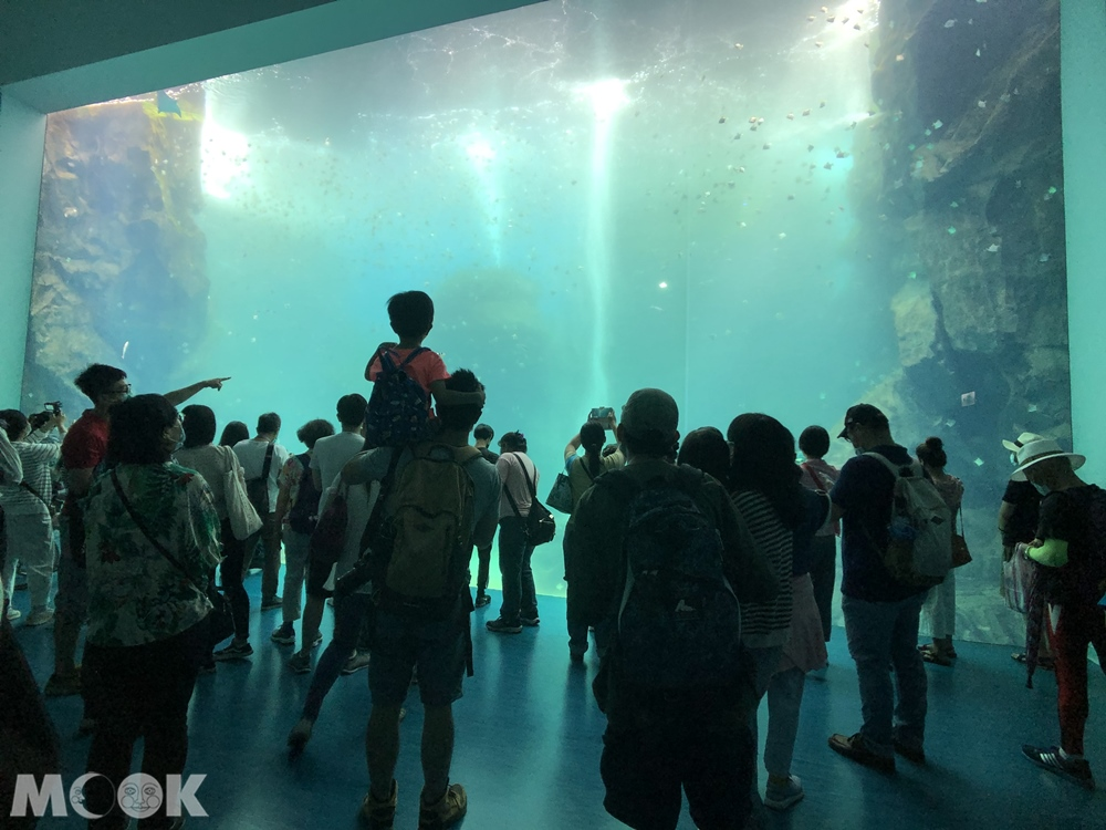 Xpark大洋池
