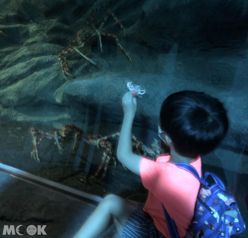 Xpark 深海尋覓