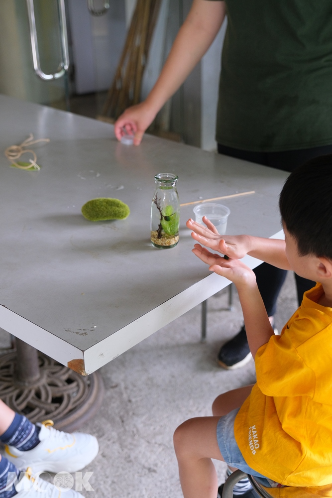 勝洋水草休閒農場 藻球DIY