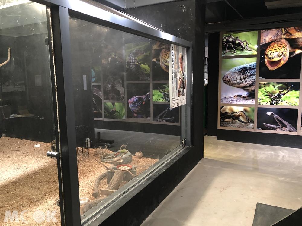台灣昆蟲館 新竹館 參觀環境